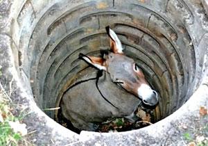 Cuento del burro que cayó al pozo